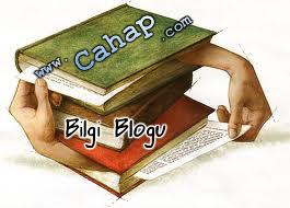 cahap.com logo