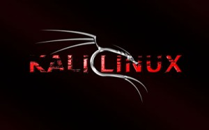 Kali Linux E: invalid Operation Software Hatası